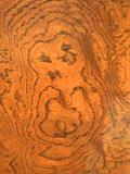 欅の牡丹杢